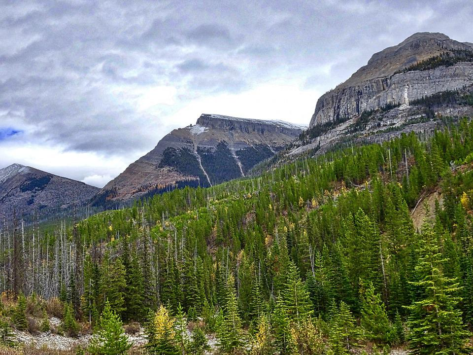 Autumn, Mountains, Forest, Rockies, Canada, Landscape