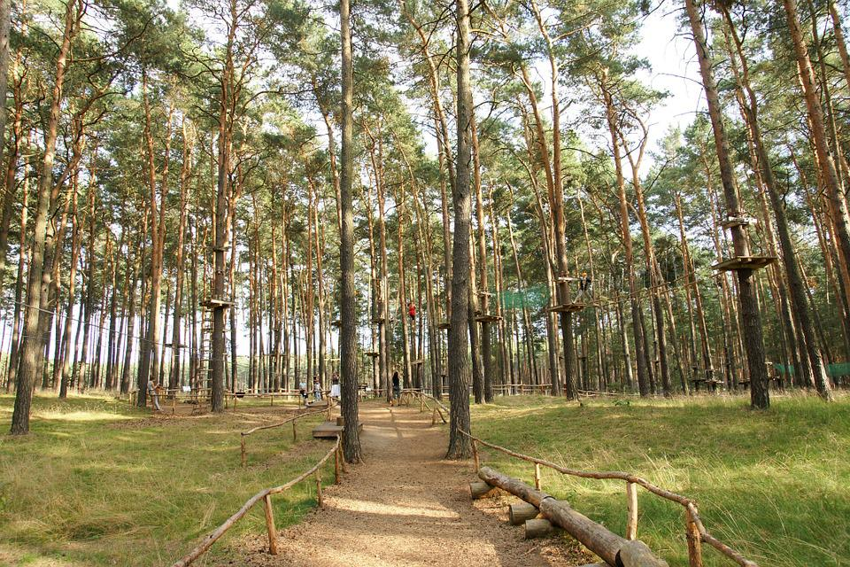 Climbing Park, Forest, High Ropes Course