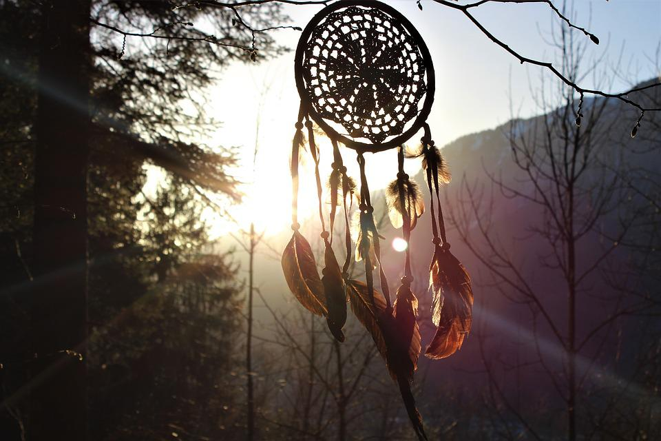 Dream Catcher, Feather, Sunset, Forest, Nature, Tree