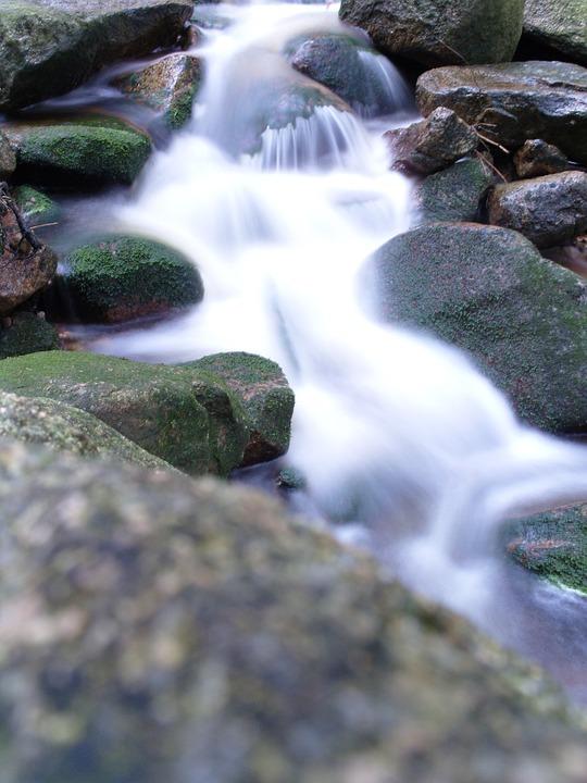 Water, Nature, Landscape, Flow, Murmur, Forest
