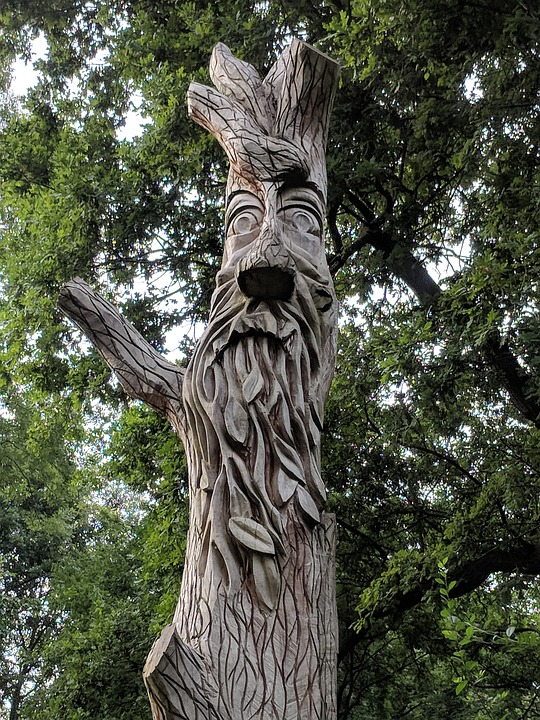 Green Man, Tree, Face, Man, Nature, Outdoor, Forest