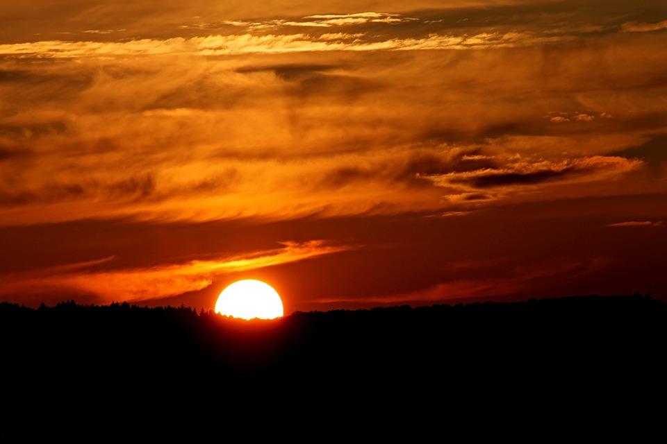Sunset, Horizon, Forest, Evening Sun, Landscape