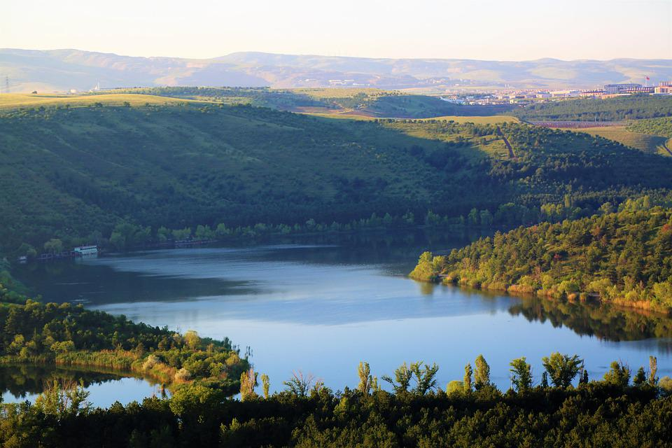 Landscape, Lake, Water, Trees, Forest, Nature