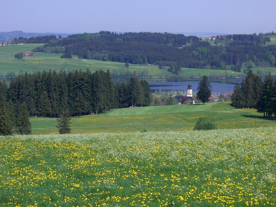 Ruins, Steeple, Rottachsee, Elleghoehe, Forest, Meadow