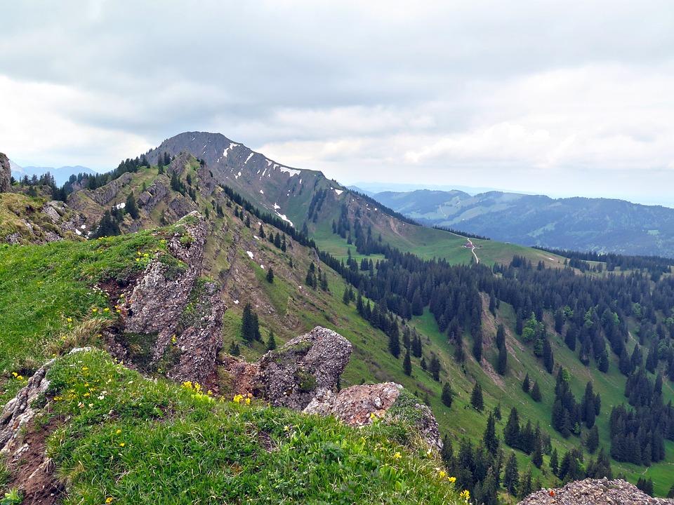 Allgäu, Mountains, Rock, Alpine, Meadow, Forest