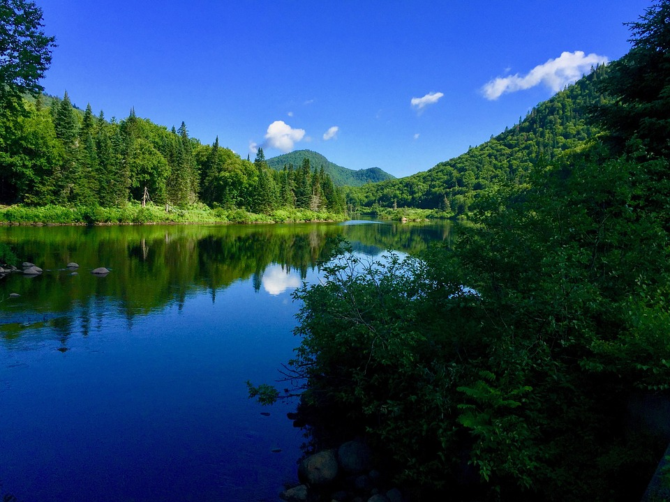 Landscape, Nature, Mountains, Sky, Trees, Forest