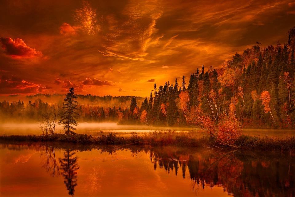 Autumn, Forest, Lake, Nature, Outdoors, Fall, Season