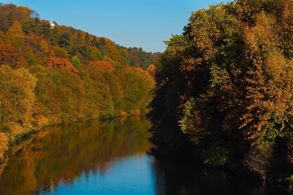 Autumn, Nature, Trees, Landscape, Forest, Farbenspiel