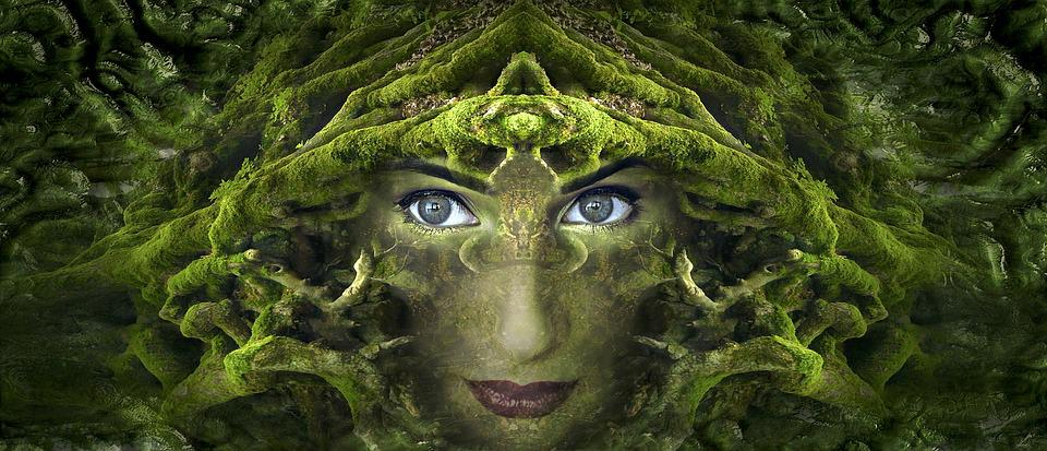 Fantasy, Portrait, Root, Moss, Forest, Symmetrical