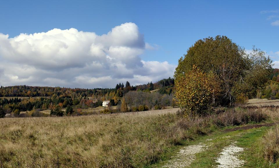 Slovakia, Luka, Priroda, Javorie, Autumn, Forest