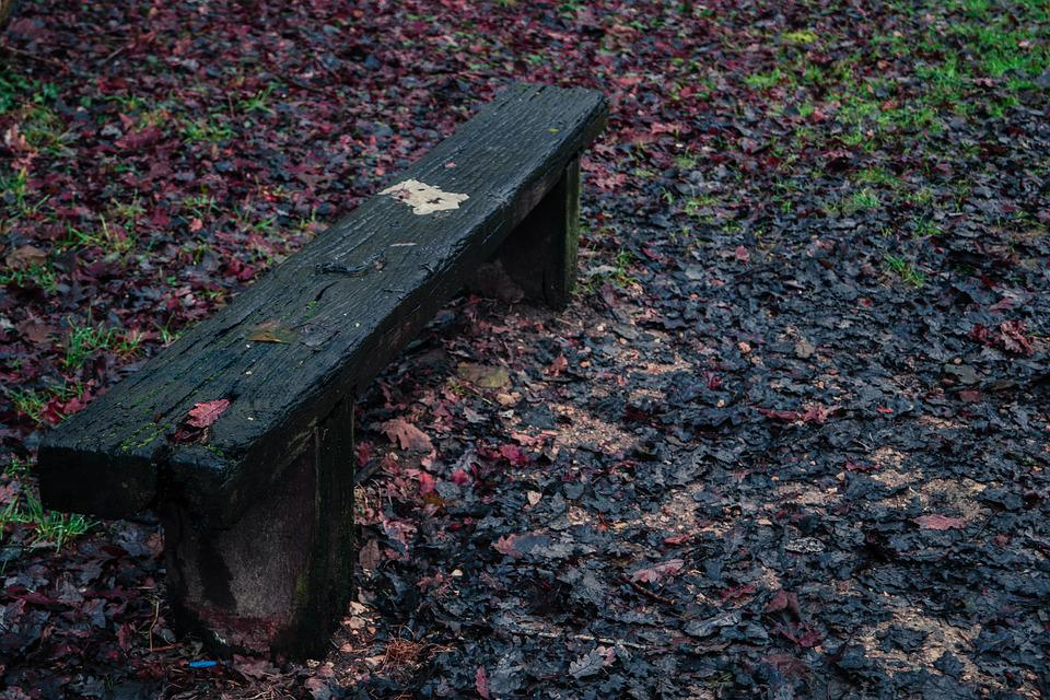 Bench, Path, Tree, Forest, Nature, Green, Red, Wood