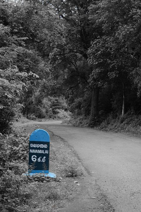 Route Marker, Forest Road, Navamalai, Track, Hike