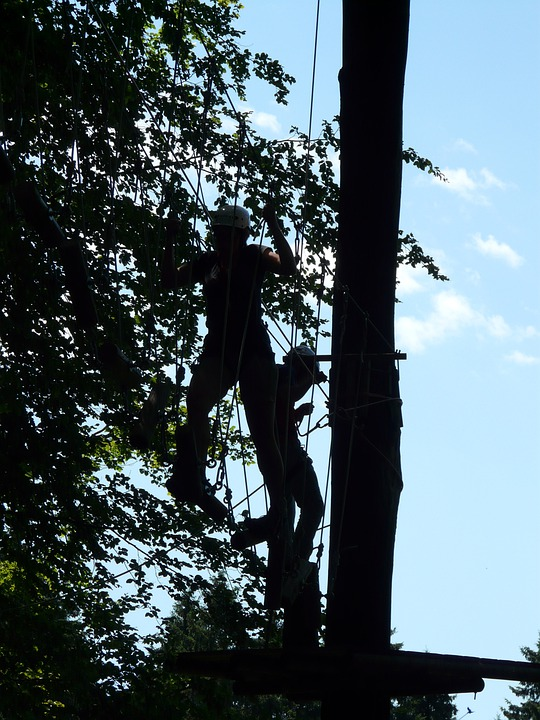High Ropes Course, Obstacle, Climb, Drex, Forest Ropes