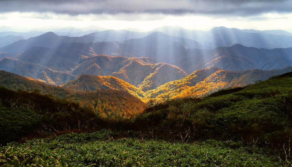 Autumn, Mountains, October, Shirakami-sanchi, Forest