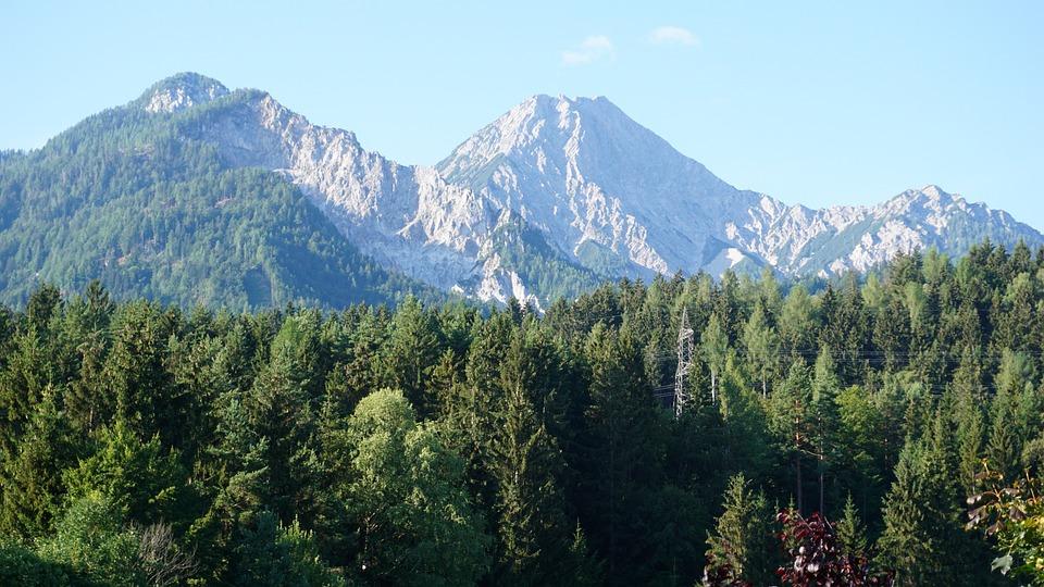 Mountains, Forest, Summit, Trees, Mittagskogel