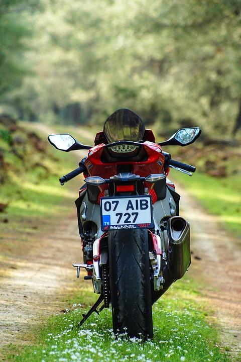 Motorcycle, Vehicle, Honda, Engine, Forest, Trees, Road