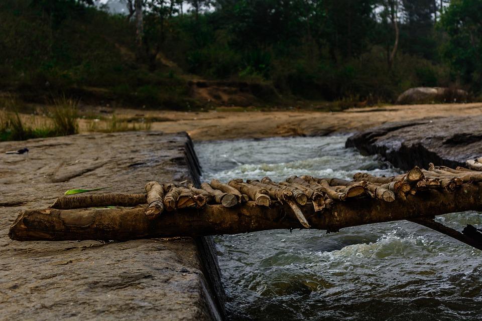 Bridge, Nature, Forest, Water, Woods, Falls, Flow