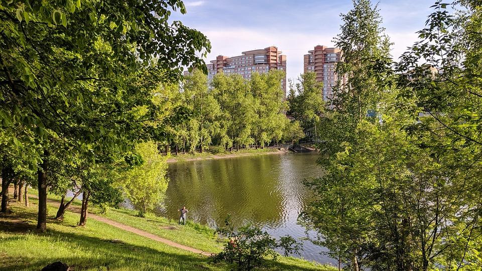 Pond, River, Landscape, Forests, Green, Calm, Trees
