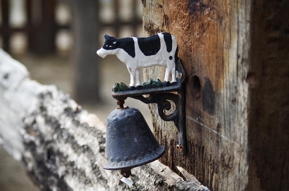 Forever, Garnish, Cow, Farm, Milk, Cattle, Animal