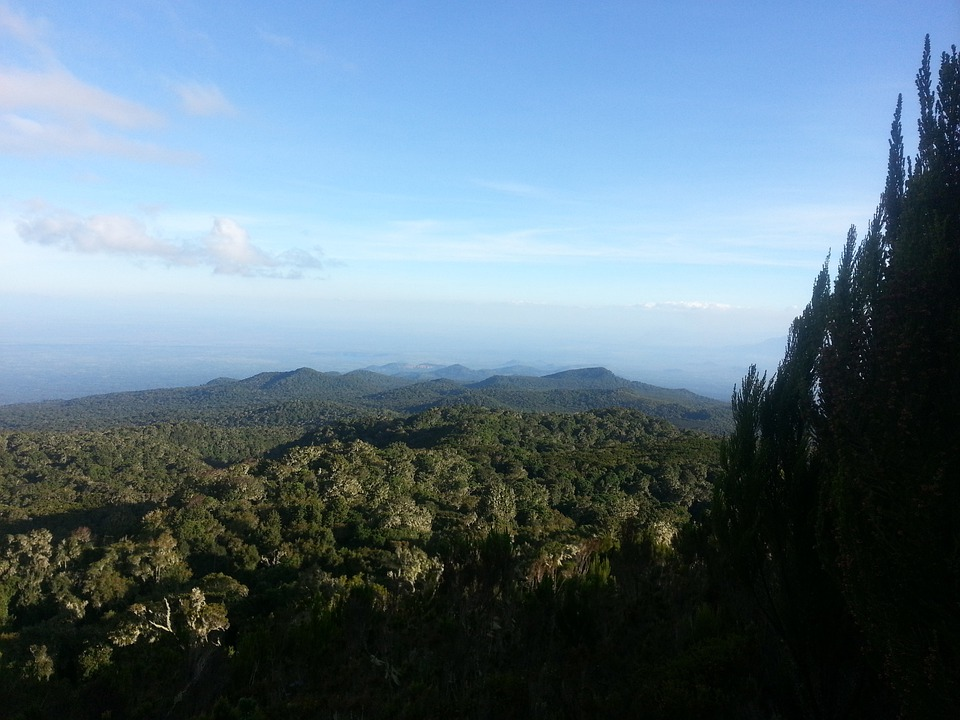Kilimanjaro, Africa, Forrest, Green, Blue, Adventure
