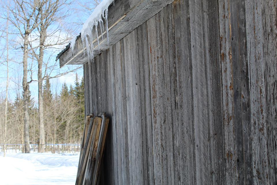 Man, Hut Sugar, Work, Fort, Maple Syrup, Nature, Shed