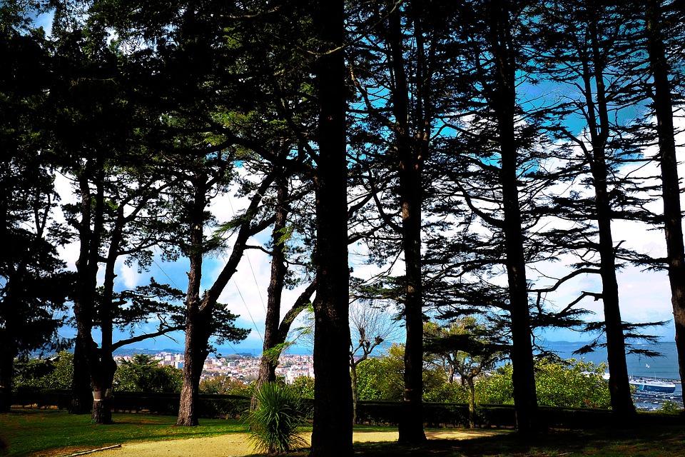 Galicia, Vigo, Or Castro, Fortress, Travel, Tourism