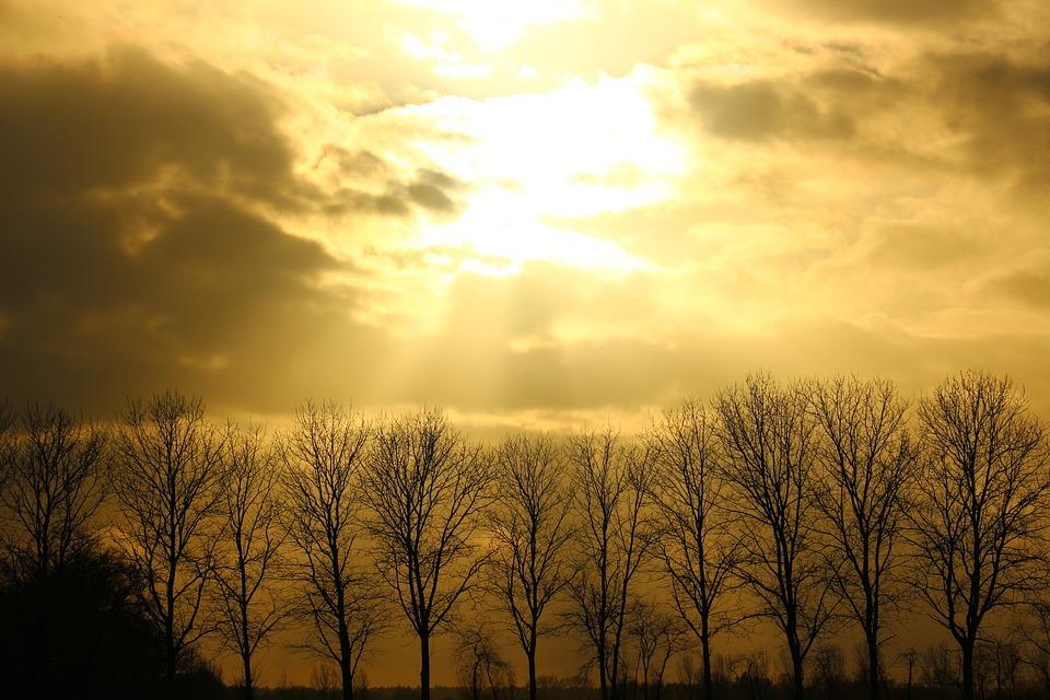 Sun, Clouds, Forward, Sky, Sunset, Sunburst, Sunbeam
