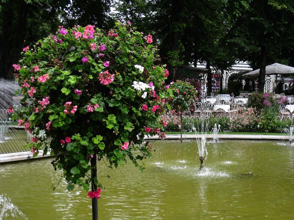 Denmark, Tivoli, Fountain, Flowers, Tree, Summer, Water