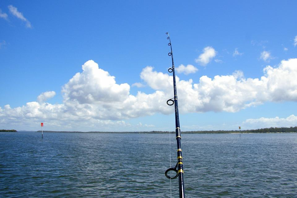 Fishing, Sky, Sea, River, Fox