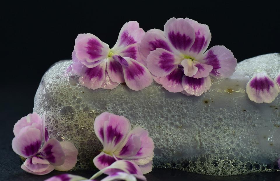 Soap, Foam, Wet, Fragrance, Flowers, Purple, Cleaning