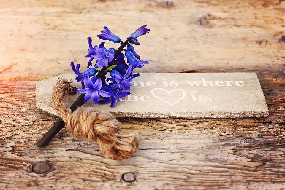Hyacinth, Flower, Flowers, Fragrant Flower, Blue