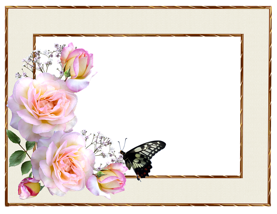 free photo frame design roses border butterfly max pixel