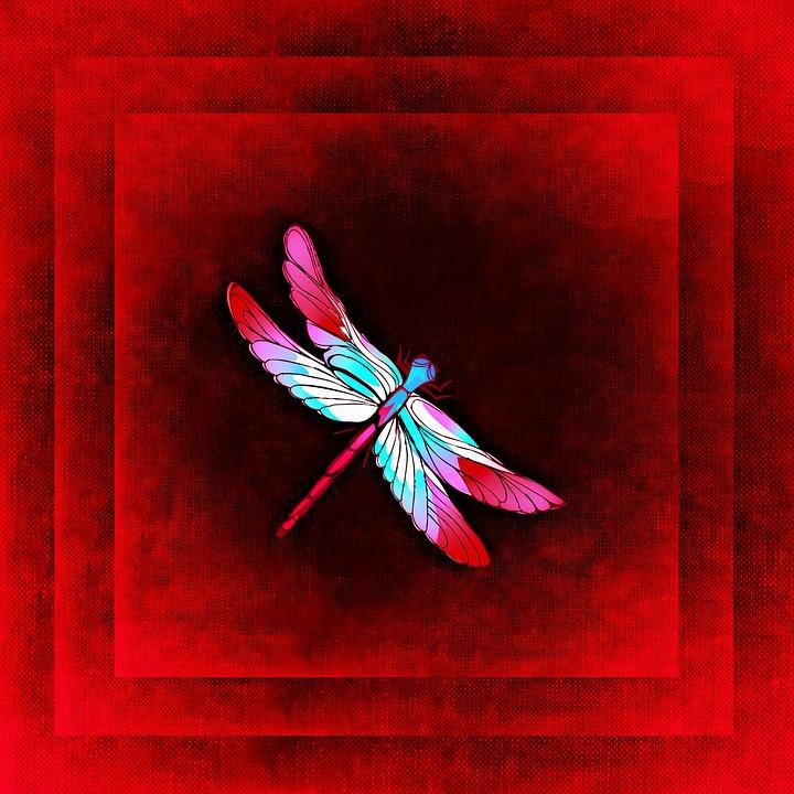 Dragonfly, Frame, Image, Outline, Color, Framed, Red