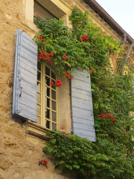 Wall, Village, Provence, France, Building, Flowers