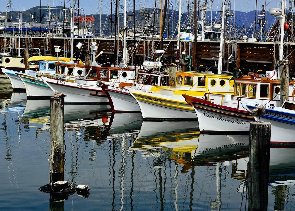San, Francisco, Yachts, Sail, Boats, Marina, California