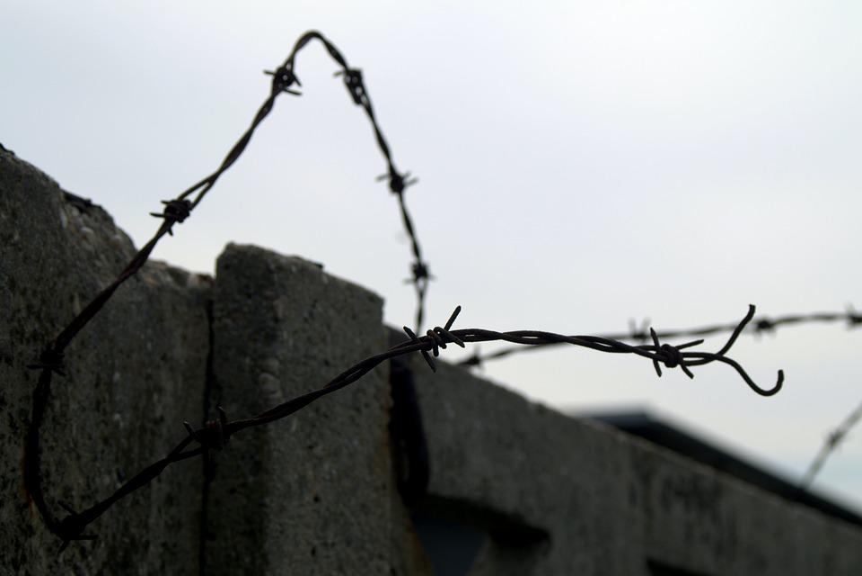 Free photo Freedom The Closure Of Escape Barbed Wire Prison - Max Pixel