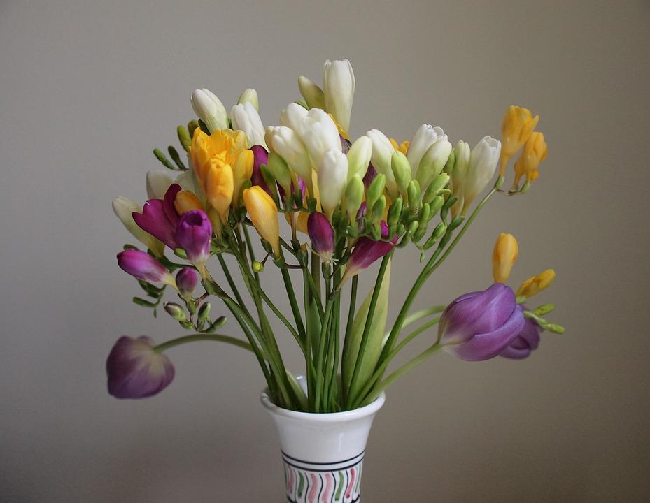 Flower, Bouquet, Still Life, Freest Of, Flowers