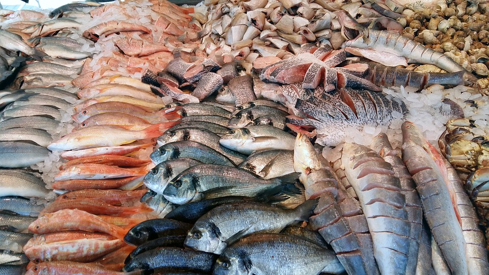 Fish, Market, Sea, Fresh