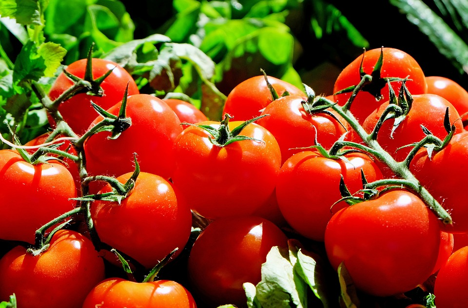 Tomatoes, Red, Food, Fresh, Market, Vegetables
