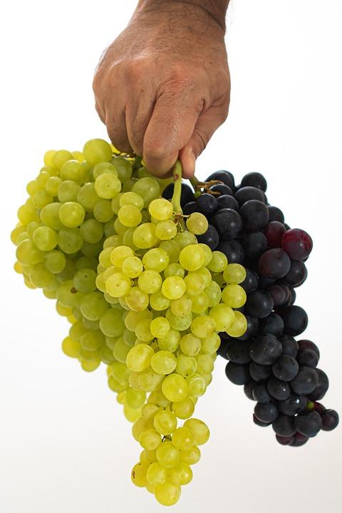 Grape, Green, Fruit, Food, Fresh, Healthy, Nature
