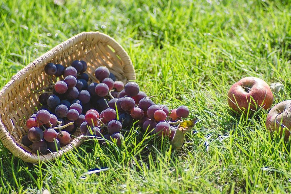 Grapes, Fresh, Dark, Shopping Cart, Apples, Fruit