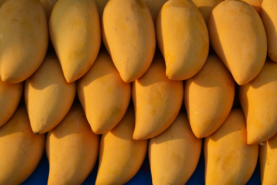 Mangoes, Fruit, Mango, Food, Tropical, Fresh, Natural