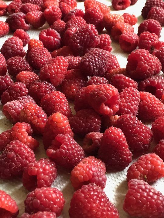 Raspberry, Berry, Food, Summer, Fresh, Vitamins, Mature