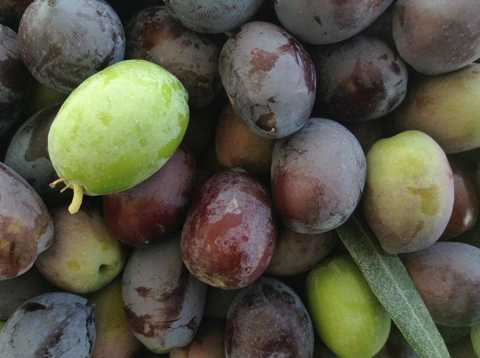 Olives, Fresh, Vegetables