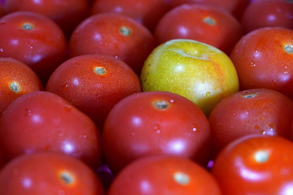 Tomatoes, Ripe, Unripe, Fresh, Tomato, Yellow In Red
