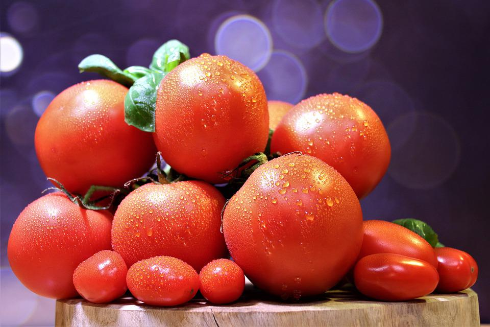 Tomatoes, Red, Moist, Water Droplets, Fresh, Vegetables