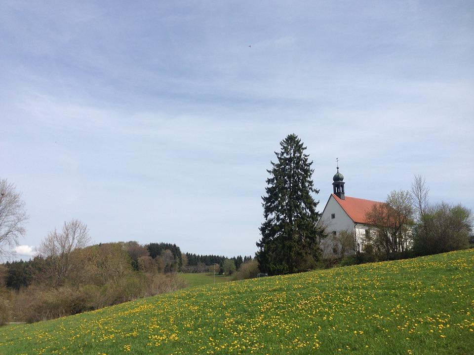 Meadow, Fridingen, Chapel, Tree, Fir, Danube Valley