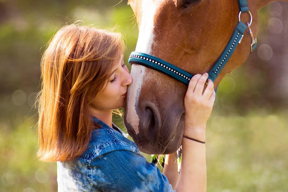 Horse, Human, Girl, Friendship, Fuchs