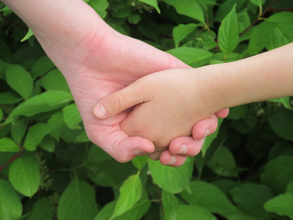 Hands, Friendship, Love, Trust, Friends, Two Hands
