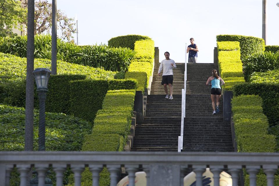 Free photo Frisco Park Sport Running - Max Pixel